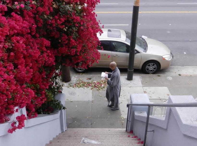 out my front door (3) - Copy