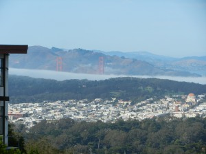 Marin headlands, Golden Gate Bridge, Golden Gate Park, from the top of Twin Peaks .