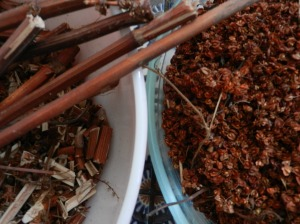 Reddish orange sticks and seeds from the yellow dock plant.