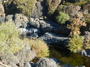Black-lava-surrounded swimming hole, closer perspective.