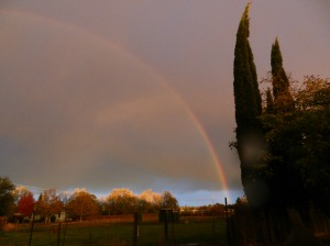 06 rainbow (9)