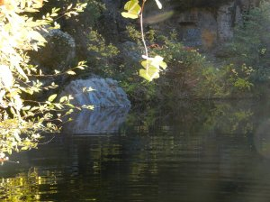 Still waters of Salmon Hole through sunlit trees. A larger perspective.