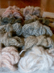 Naturally dyed handspun yarn. Dyes used are bougainvillea, rosemary, coffee, yellow dock, and lichens. Mordants are alum/cream of tartar, brass, copper, iron, gelatin, soy, and urine.