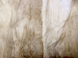 Slightly different shades of tans and creams on two pieces of cotton.