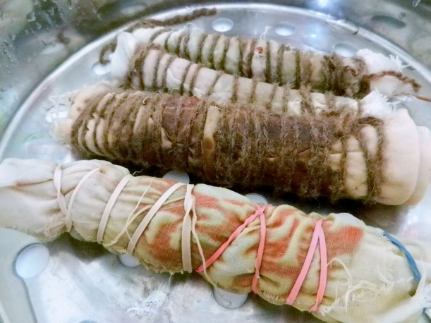 four springroll-shaped bundles of cotton and flora, exhibiting beginnings of orange and purple colors, one day after steaming