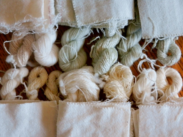 Creamy brown and greenish silk and wool handspun yarn and wool fabric, dried and ready to cure for a month or so before dyeing.