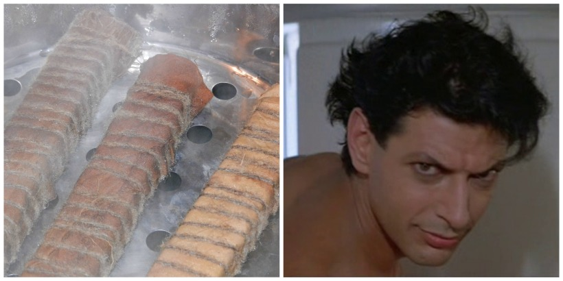 Steamed bundles, cooling off, left; Jeff Goldblum, not cooling off, right.