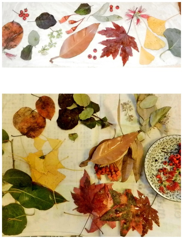 mordanted cottons covered in flora, ready for ecoprinting