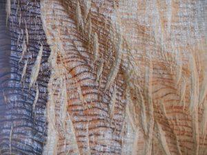 01 bark sheet